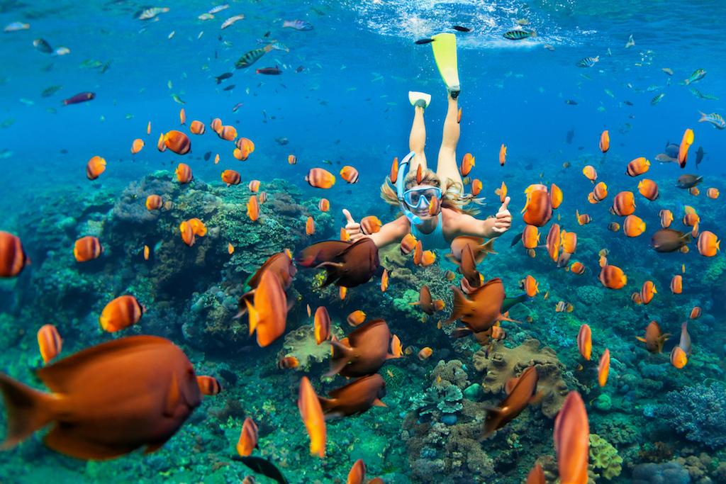 Snorkel en las Islas Maldivas