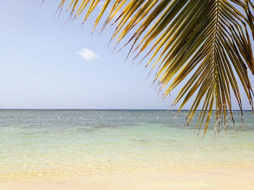 Jammin In Jamaica parte II