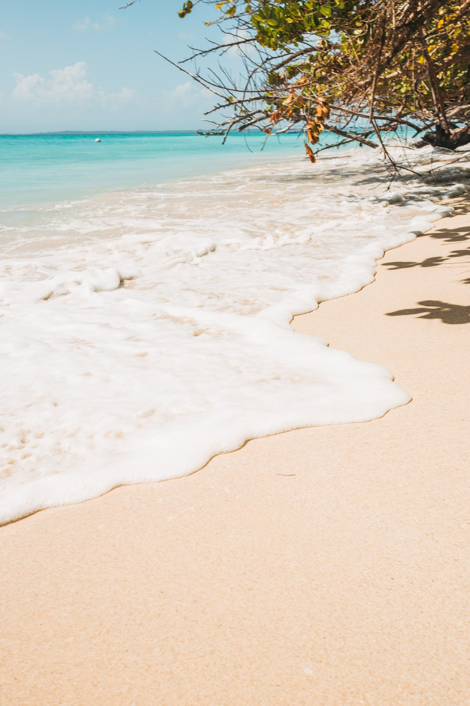 Qué hacer en Bocas del Toro