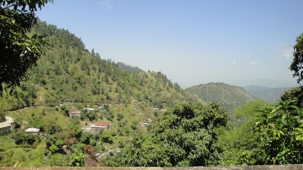 Recorriendo las Blue Mountains en Jamaica