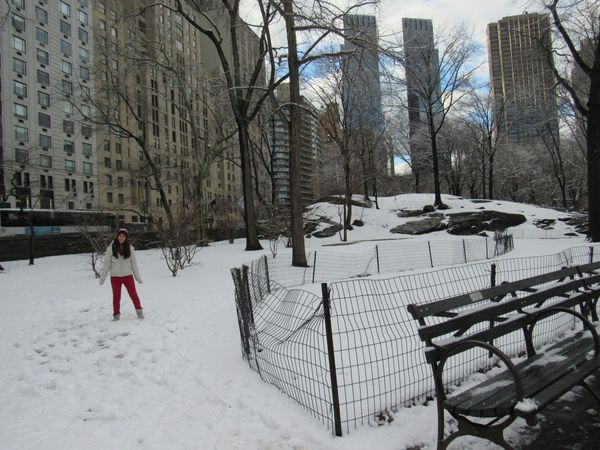 New York en invierno ¿Sí o No?